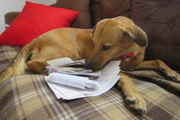 Linda custodiando mis notas tomadas en el último mes en España y que todavía no tuve ocasión de mirar.